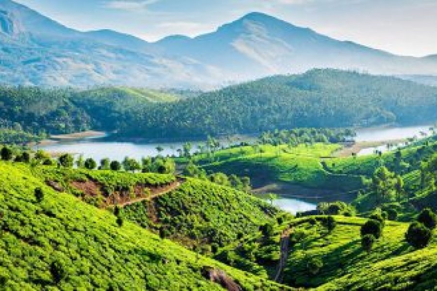 Best places to visit Kerala
